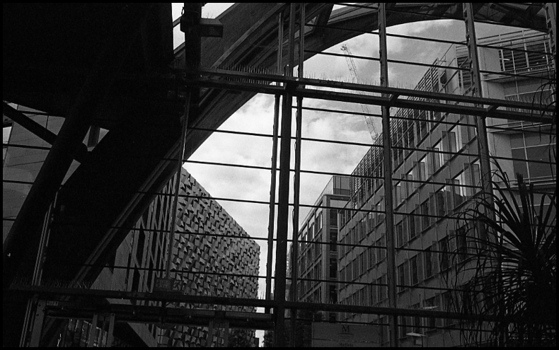 Winter Gardens - Sheffield | Leica SUMMICRON 50mm f2 <br> Click image for more details, Click <b>X</b> on top right of image to close